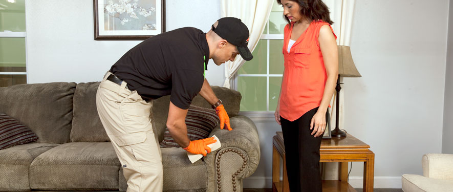 Del Mar, CA carpet upholstery cleaning