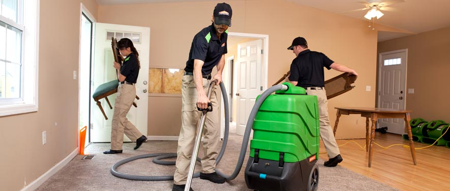 Del Mar, CA cleaning services